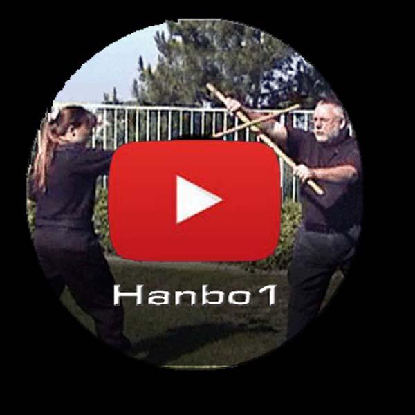 Hanbo online training copy
