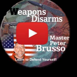 Weapons disarms  online training
